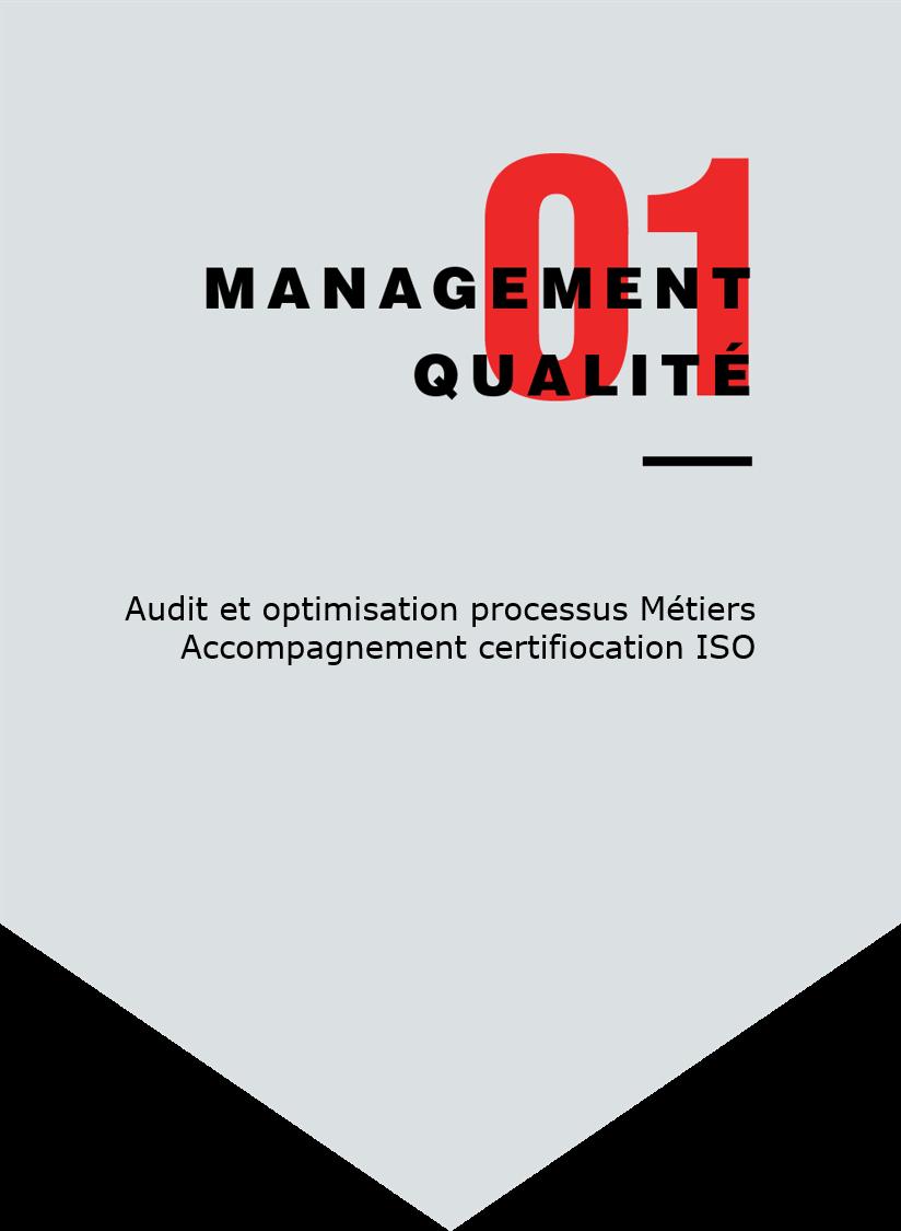 Audit et optimisation des processus Métiers